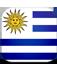 Uruguay Copa América 2021